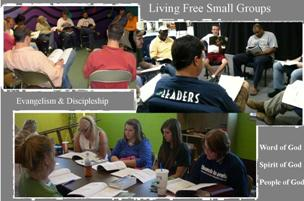 Living Free Small Groups